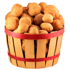 Bushel of potatoes